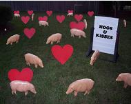 Hogs and Kisses Romantic Lawn Greeting